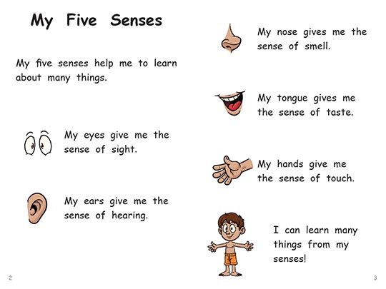 five senses poem My poetry book table of contents acrostic poems alphabet alliteration five senses poems use your senses to study or investigate a subject the focus of the poem is on using similes.