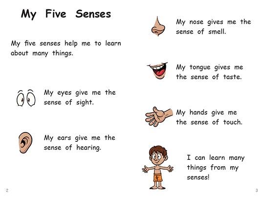Pics photos five senses poems for kids