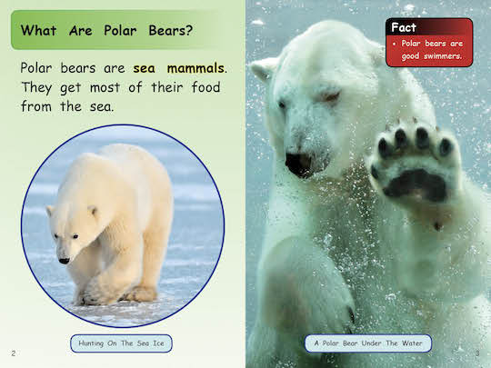 Polar Bear Facts (6-pack)*, 2014) - Indigenous & First Nations ...